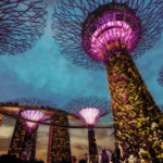 Singapore Central Bank Publishes Updated ICO Guidelines
